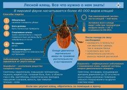 Как защититься от укусов клещей