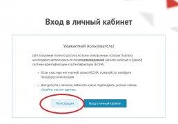 Получение госуслуг в электронном виде приобретает всё большую популярность среди кузбассовцев