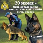 20 июня - День образования кинологической службы МЧС России