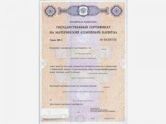 В Кузбассе более 5,6 тысяч семей получили ежемесячные выплаты из маткапитала