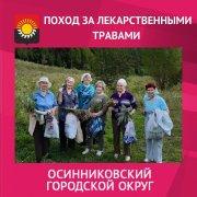 """Экскурсия на природу """"Заготовка лечебных трав"""""""