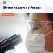 В России более 95% выявленных случаев COVID-19 приходятся на штамм коронавируса «дельта»