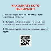 Где найти информацию о выборах?