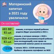 Более 12 тысяч кузбасских семей получили в 2021 г. сертификат на материнский капитал